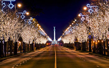 sparkling festive lights on the treed lining the avenue