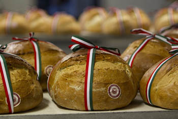 a round-spahe bread with a national tricolor ribbon tied on it