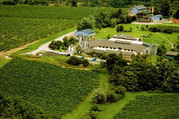 a moren winery in a valely among green vineyards at Aszar-Neszmely
