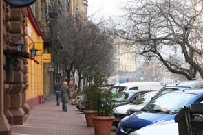 Along Dohány utca