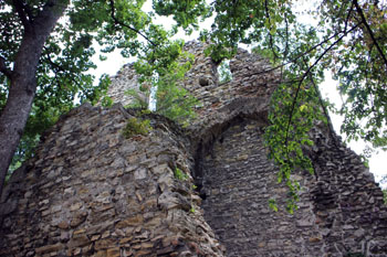 ruins of the Franciscan priory