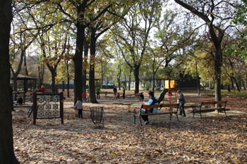 kids on the playground in Orczy garden