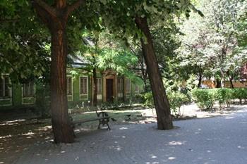 park_near_kiraly_baths