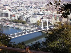 Elizabeth Bridge from bird's eye view