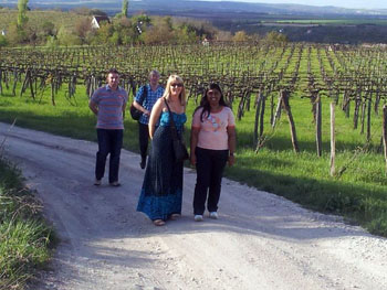 2 ladies and their husbands walking among the green hills of Etyek