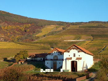 the white facade of Hétszőlő winery in autumn
