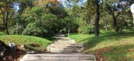 Park at Gellert Hill in October