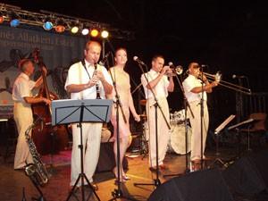 Summer Jazz Concert in the Zoo