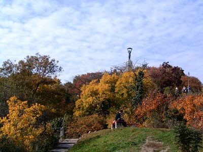 Gellert Hill in autumn