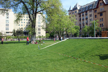the green lawn in Oilimpia Park