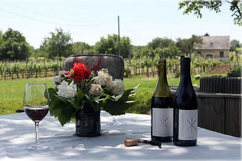 2 bottles of wine, a a half glass of red wine, and a bunch of flower in a vase on a white clothed table in a vineyard