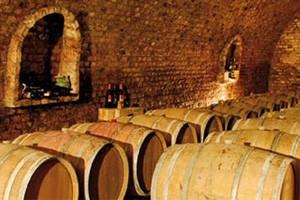 cellar with oak barrels in Etyek