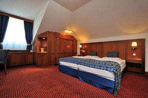 a double room in Carlton hotel