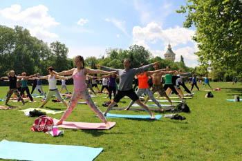 people doing yoga on a green lawn on a summer day