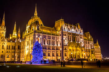 a Christmas fir with blue LED lights in front of the illuminated Parliament at night